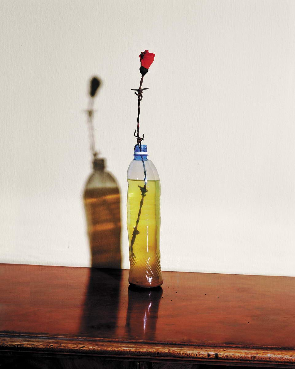 Rose of Bread, 2006, LP, 90x72 cm. שושנת לחם