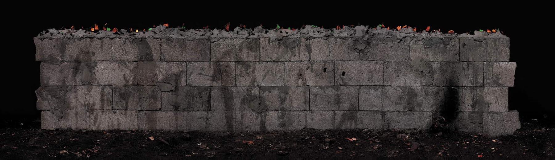 Wall, 2005, Lambda print, 125x436 cm. גדר