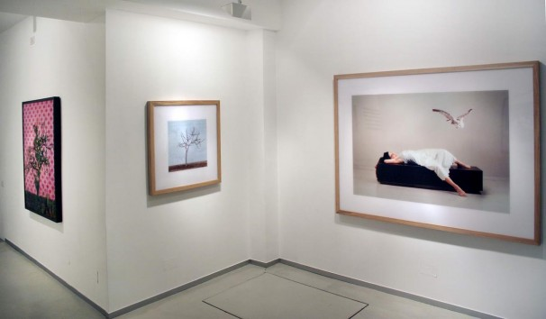 104Installation view 2