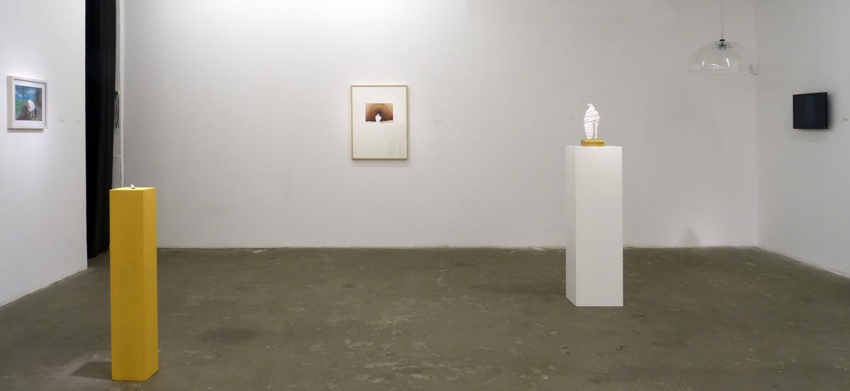 315installation view 4