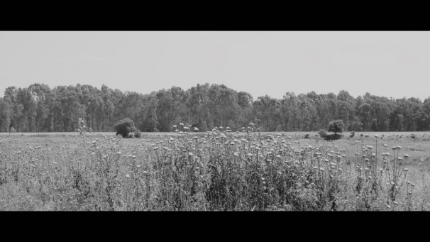 310 Family Film_2017_ Video (detail)_11.51 minutes