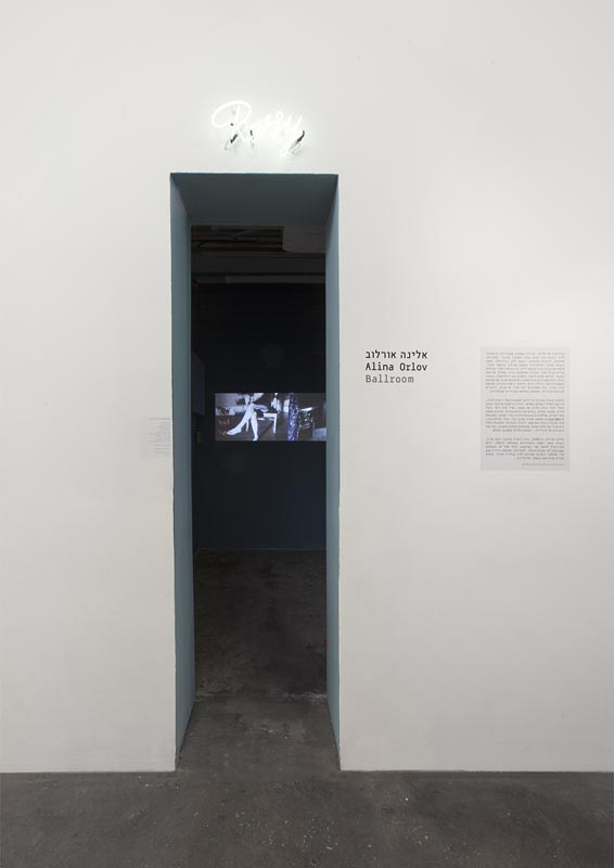 080Installation view
